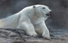 Max240_polar_ambience_image_by_rebecca_latham_-_small
