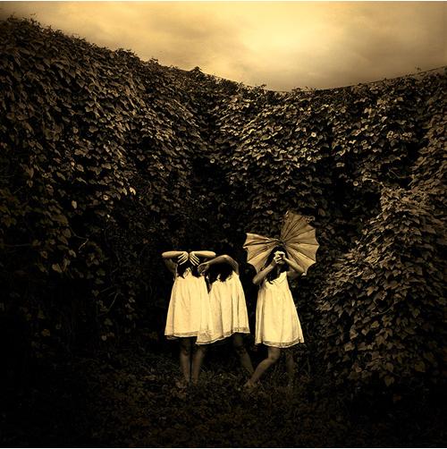 Jane Burton image