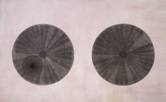Rosslynd Piggott image