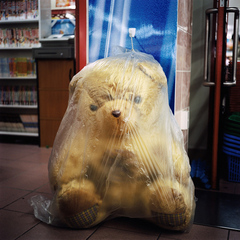 Max240_abbystorey_touchstones_plastic_wrapped_bear_650