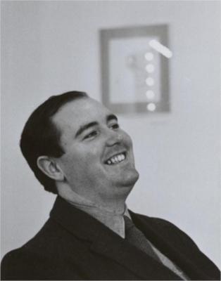 Dan Flavin image