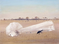 Bride in the Wimmera image