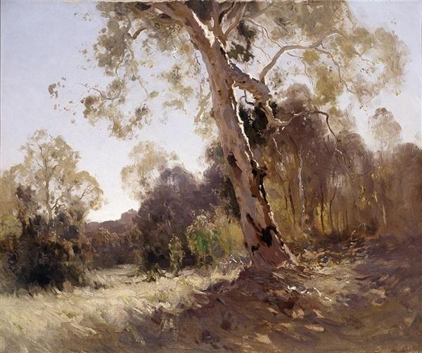 Bushland image
