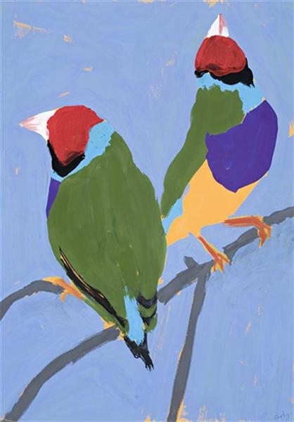 Gouldian Finches image
