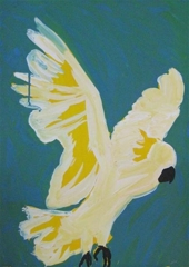Sulphur Crested Cockatoo in Flight image