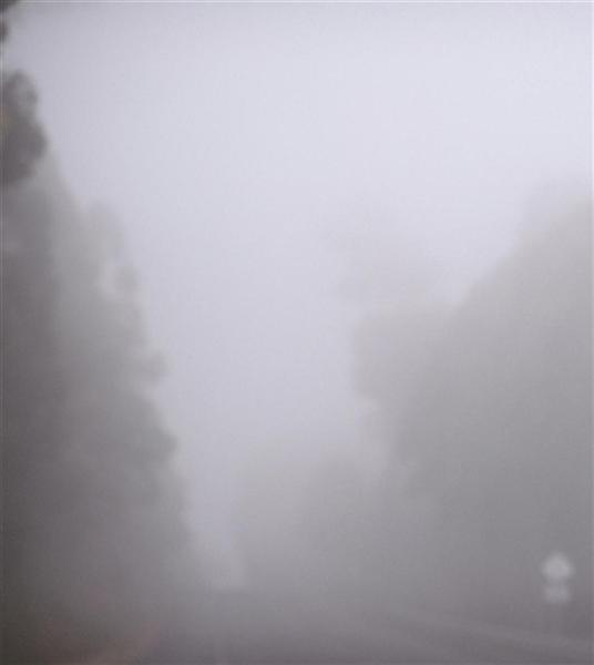 Darkwood no.23 image