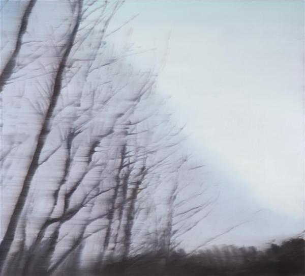 Darkwood no.7 image