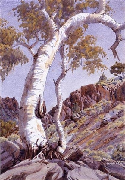 Ghost Gums, Central Australia image