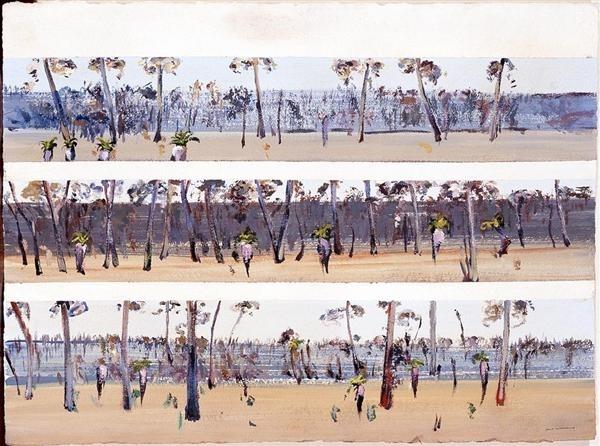 Grass Trees in Landscape, Deception Bay, Queensland image