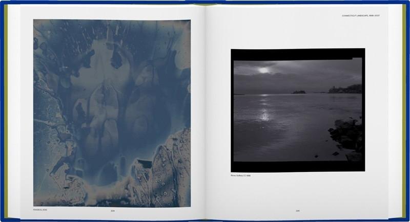 James Welling: Monograph image