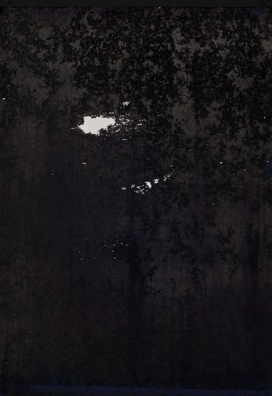 Sara Maher: Canopy image