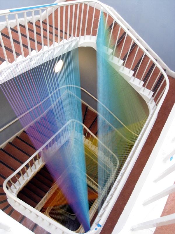 plexus no. 11 image