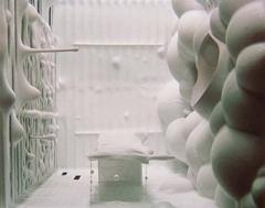 Saskia Olde Wolbers: Placebo image