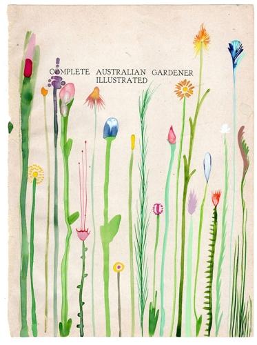 AUSTRALIAN GARDENER image
