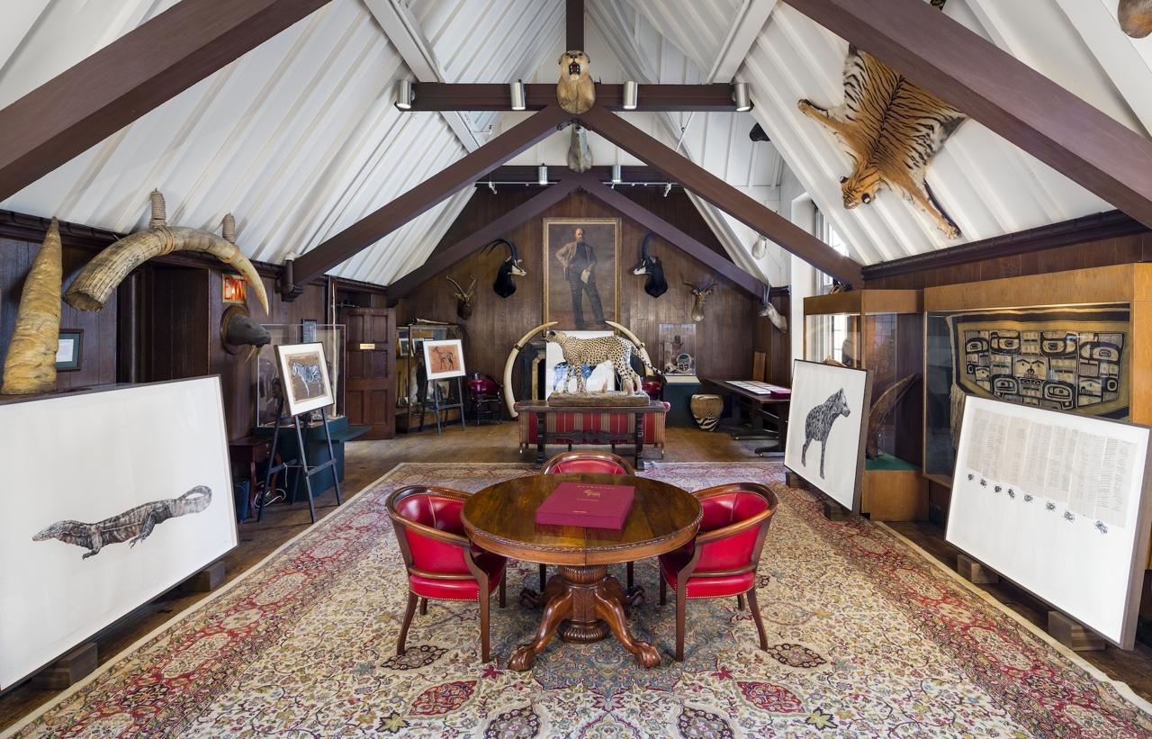 Gorongosa in Restoration- Cu baliwa cutswa image