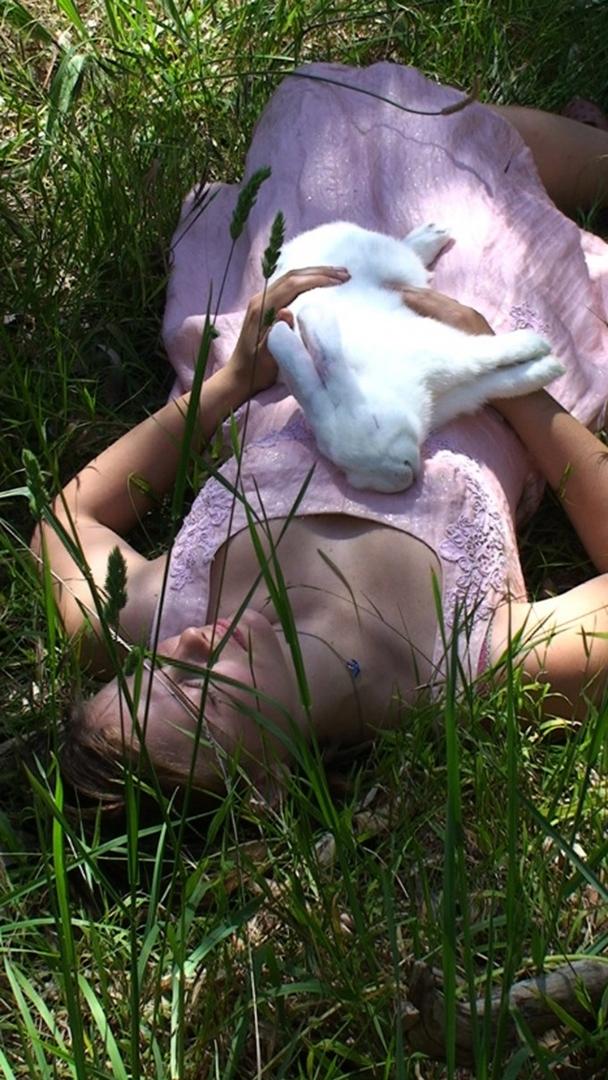 Follow the White Rabbit image