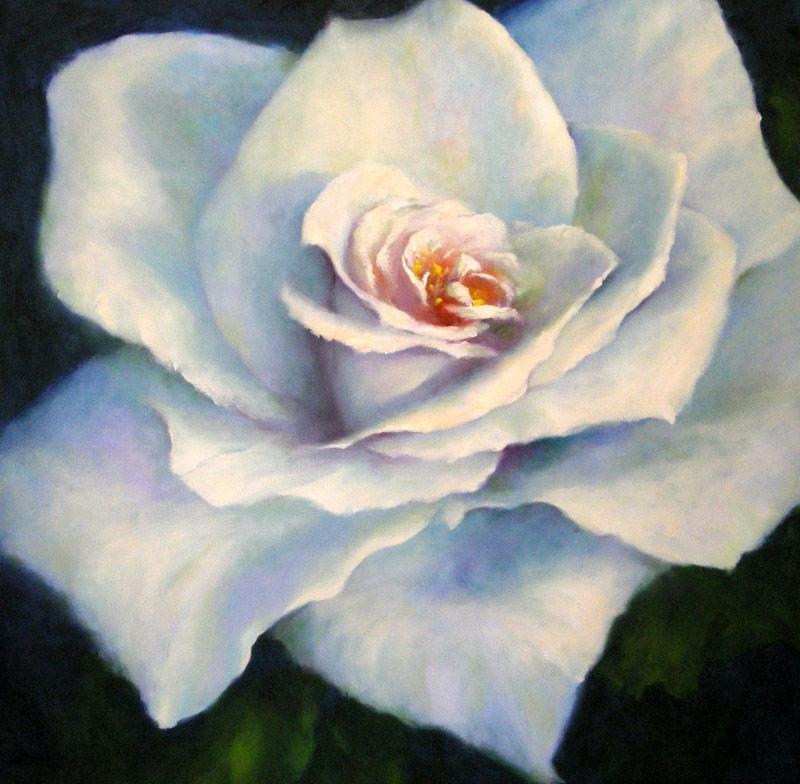 White Rose No 2  image