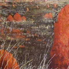 Termite Territory2 image