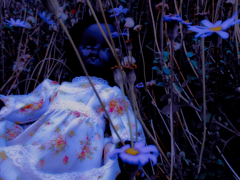doll 3 image