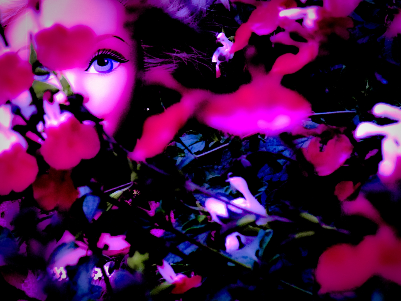 doll 14 image