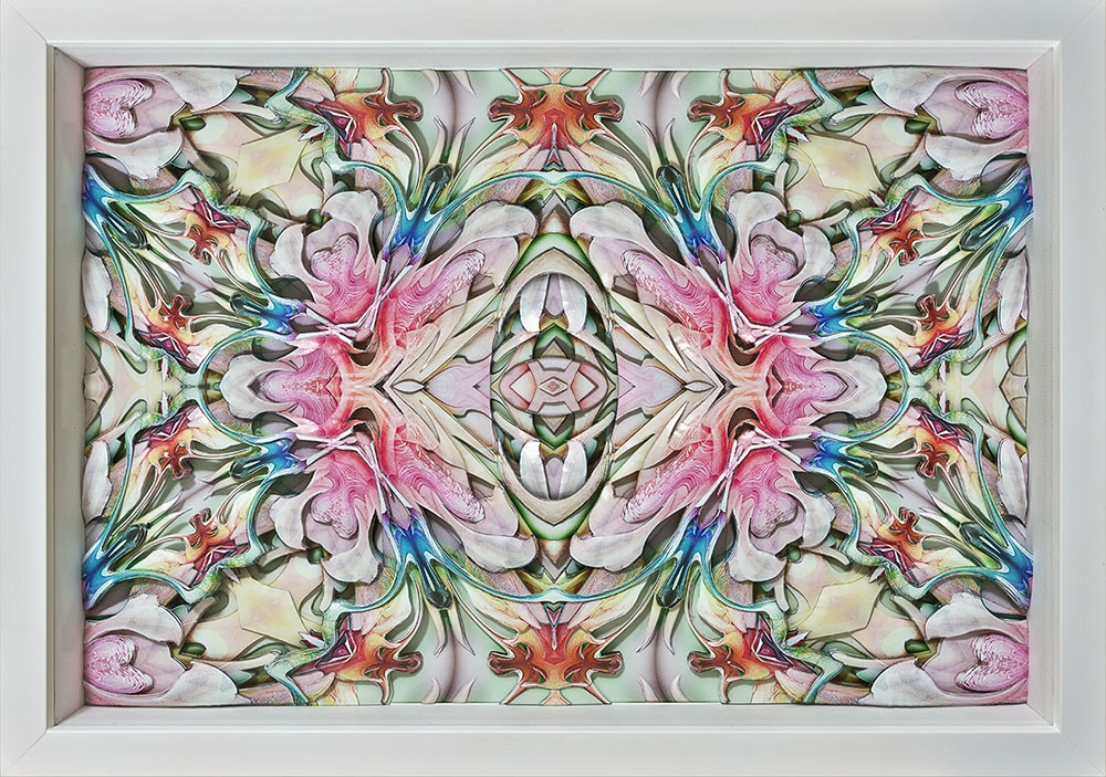 Oogenesis No.5 in 3D, 2016 image