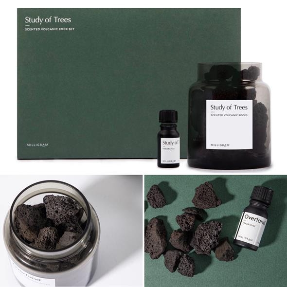 Scented Volcanic Rock Set by Studio Milligram image