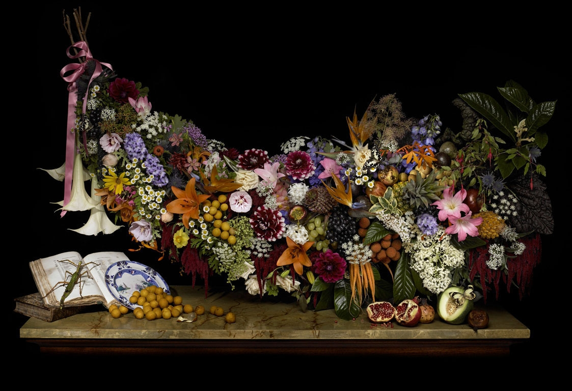 Mr Macleay's Fruit and Flora, 2008 image