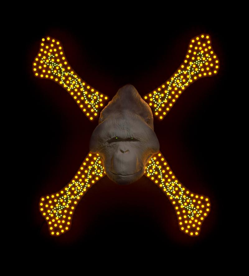 Cross Bones 2009 image