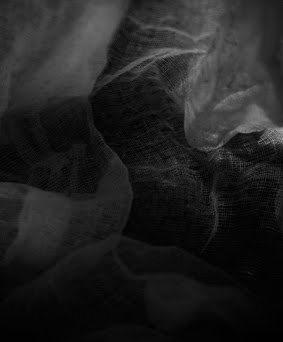 Fabric 4 image