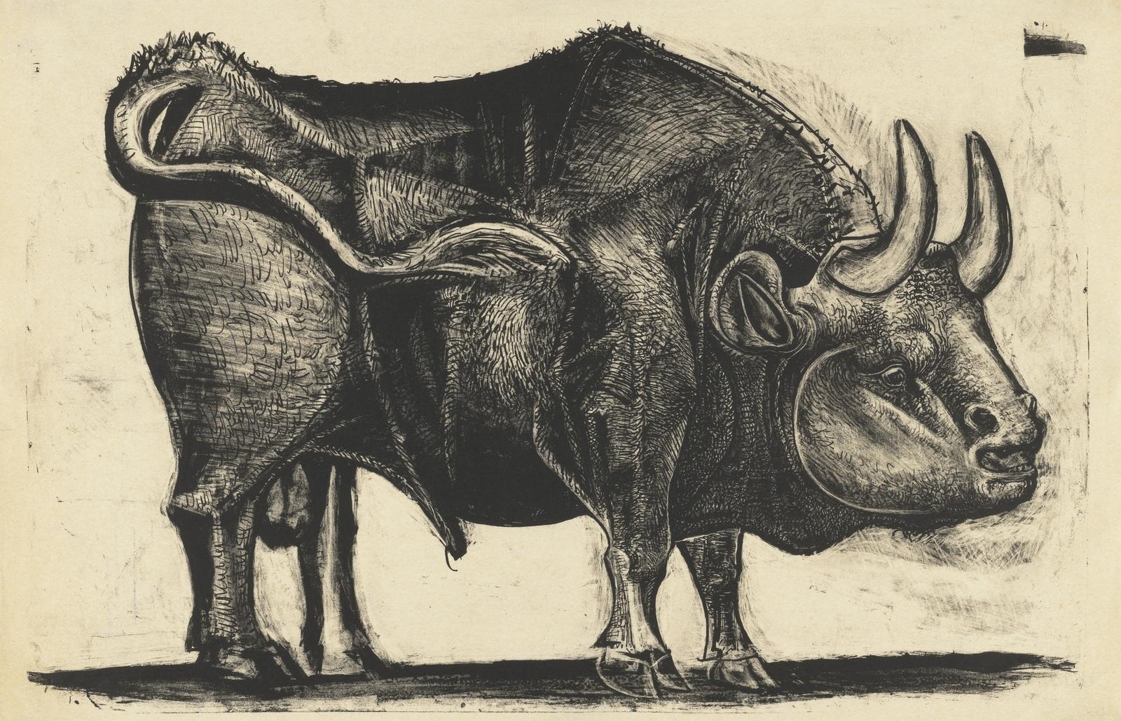 Bull, state IV, 1945 image