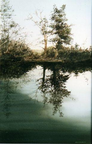4 Dawn Reflections Kakadu image