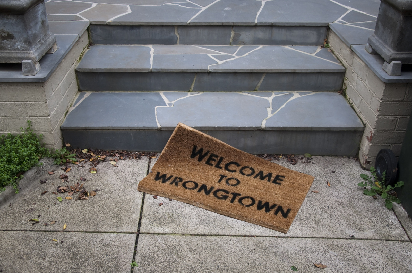 Rendezvous in Wrongtown image