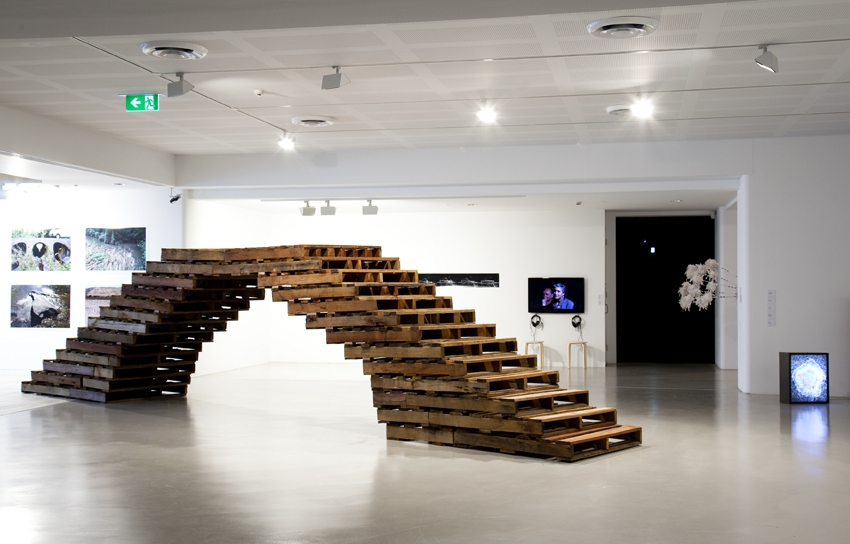 'Bridge' 2008 image