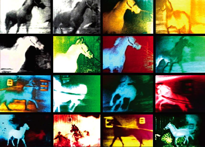 Berlin Horse  image
