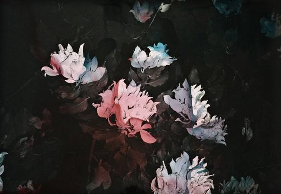 Black Varieties #6 image