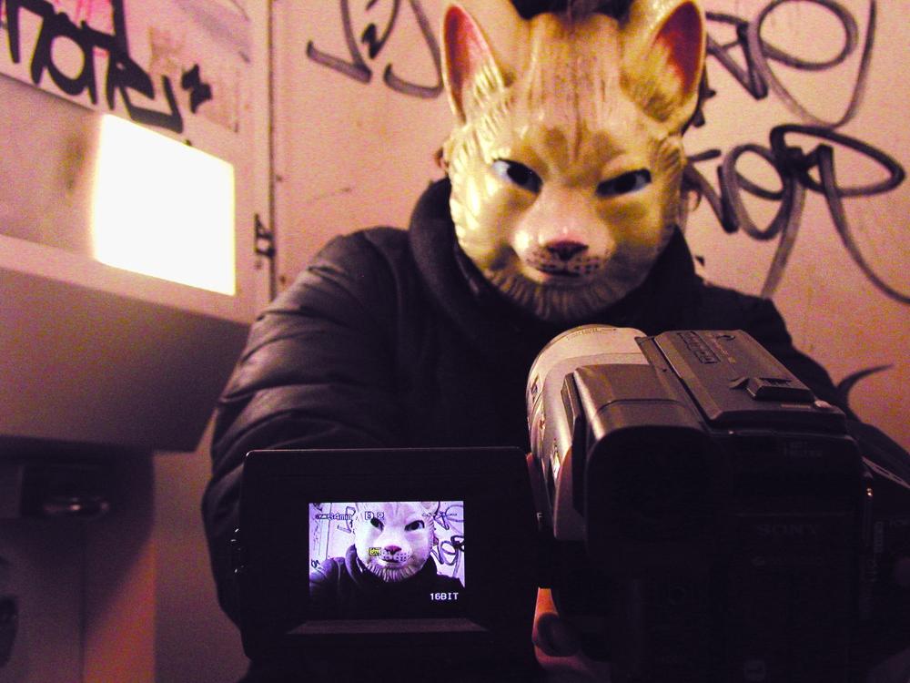 Gob squad cat image