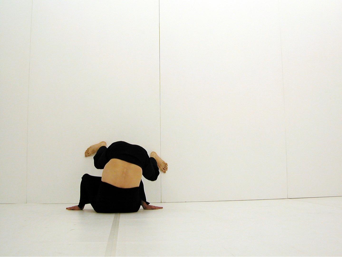 Xavier Le Roy (French, born 1963) image