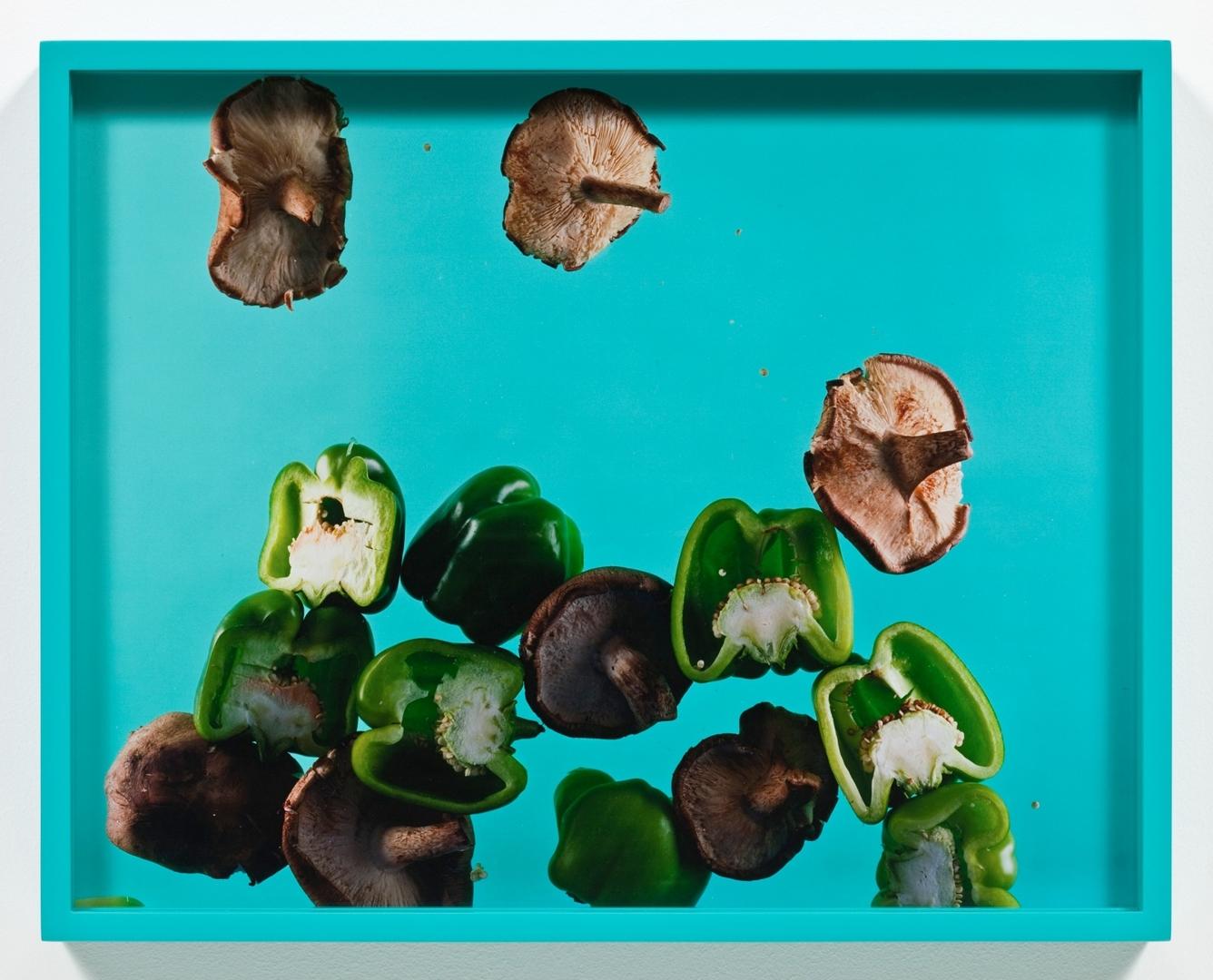 Green Peppers, Shiitake. 2009 image