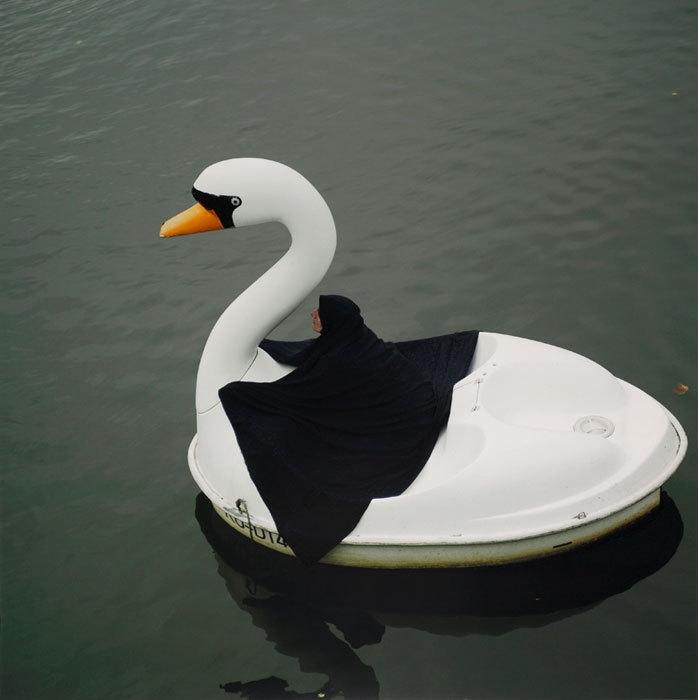 Swanrider 2004 image