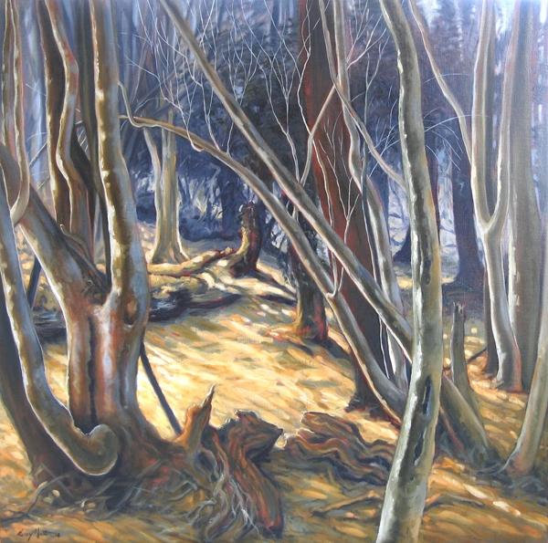 Light Flood image