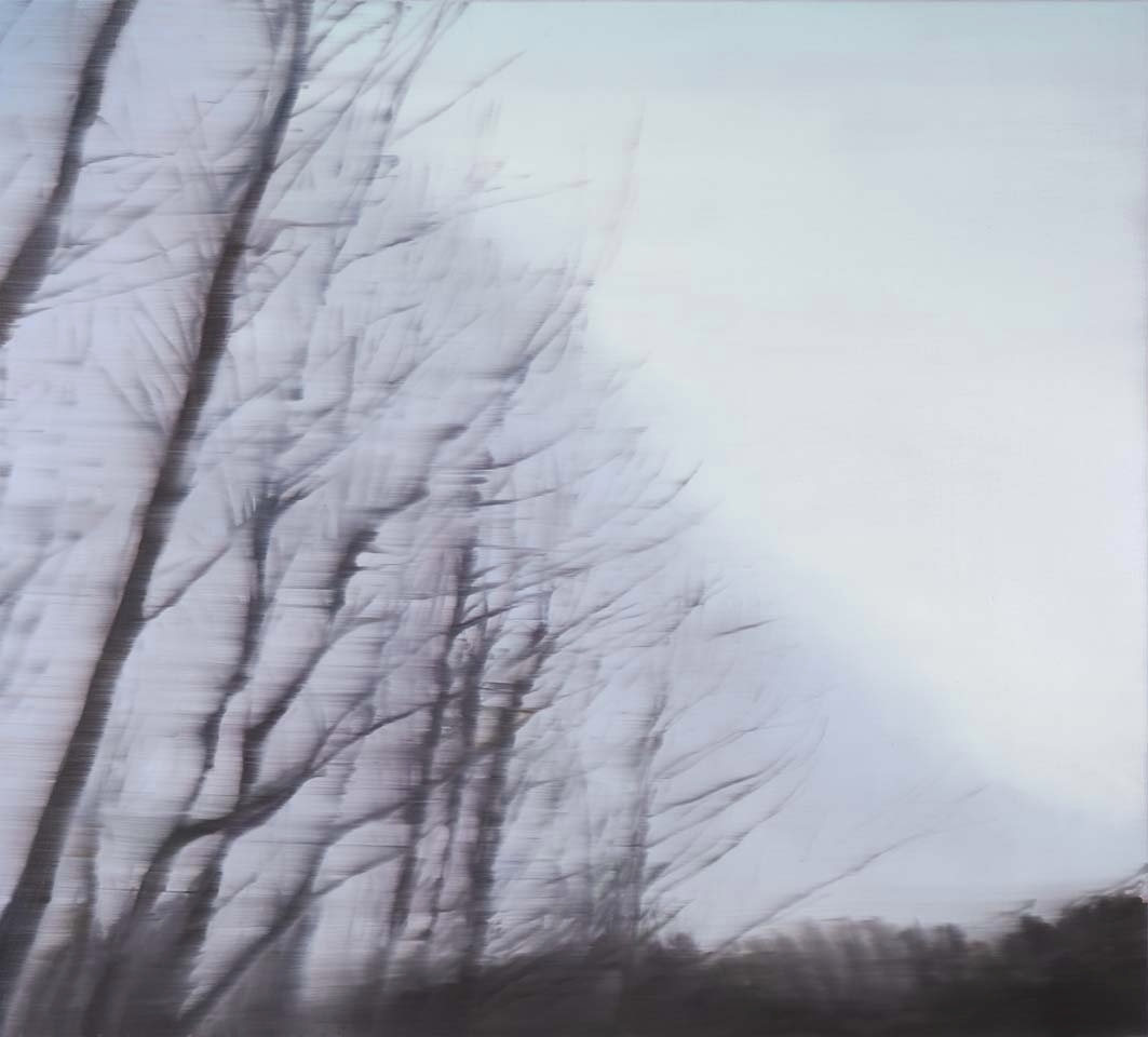 Darkwood no.7  2011 image