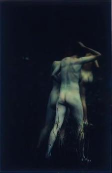 Untitled 1992/ 93 image