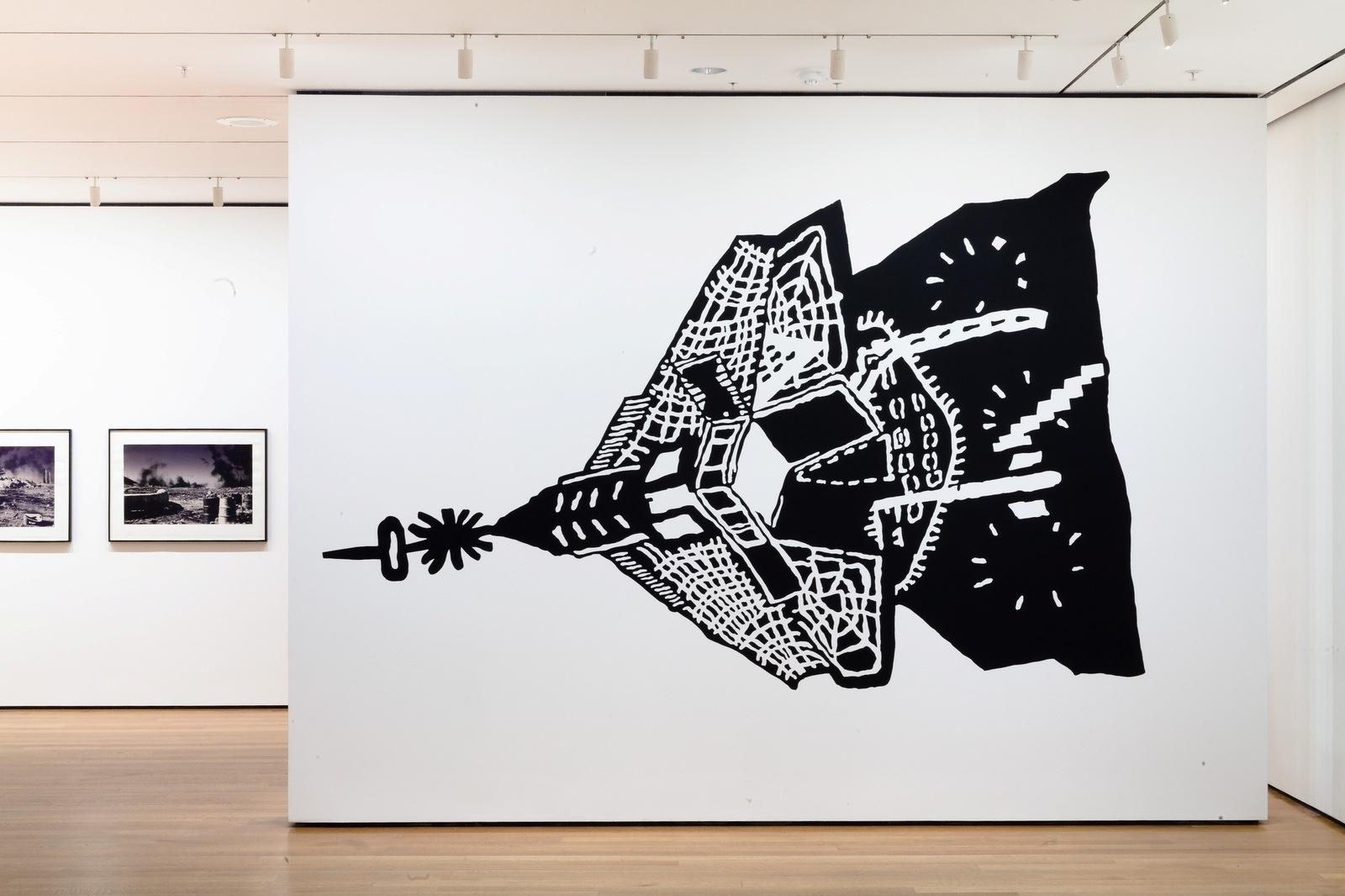 Installation view at MoMA of Kwakuhlekisa. 2007 image