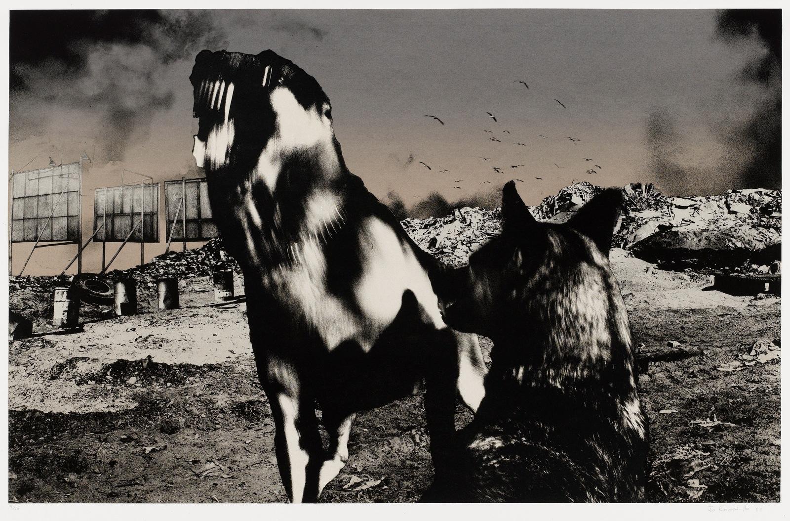 Nadir 15. 1987–88 image