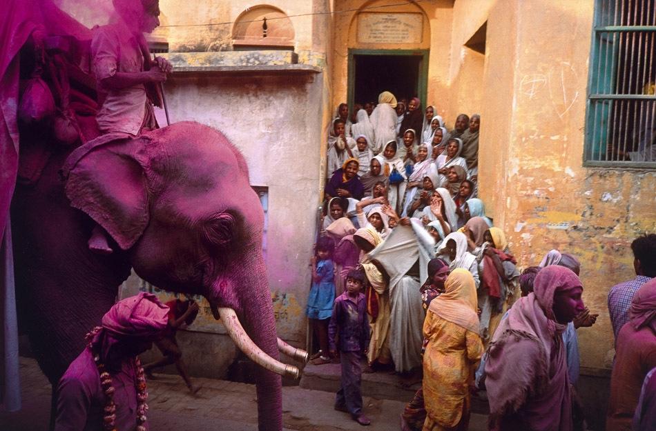 Holi festival on Rang Bhari Ekadash, Vrindavan 1989, printed 2007 image