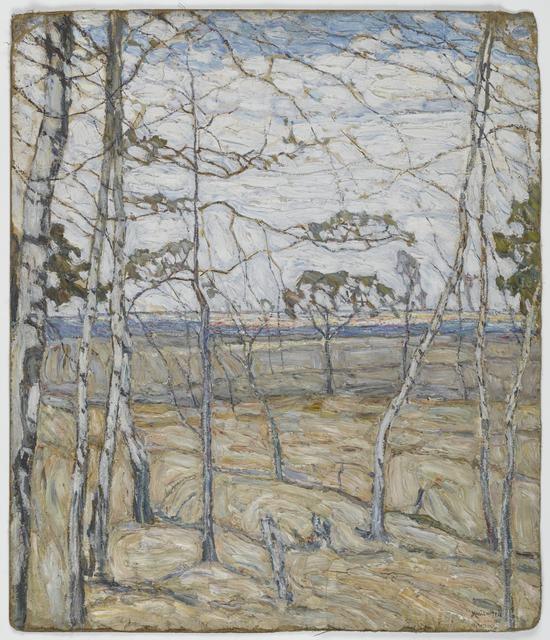Birch Trees, 1911 image