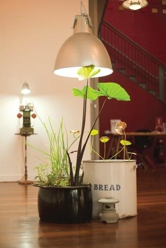 Tessa Zettel & Karl Khoe, Make-do Garden City  image