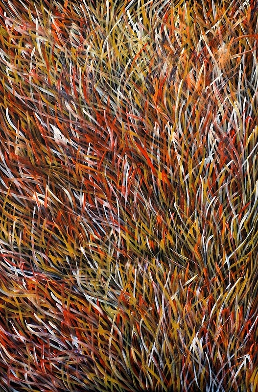 Grass Seed Dreaming image