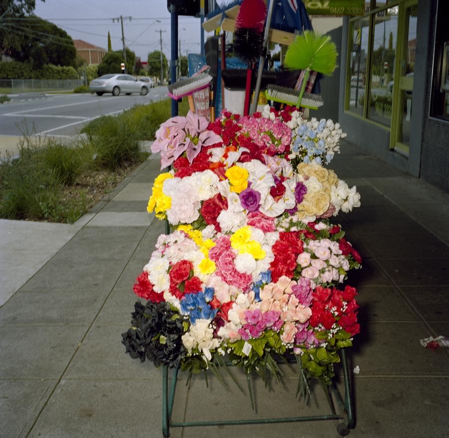 Plastic Flowers image
