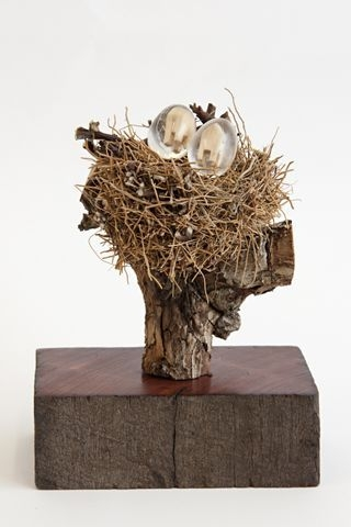 The Nest image